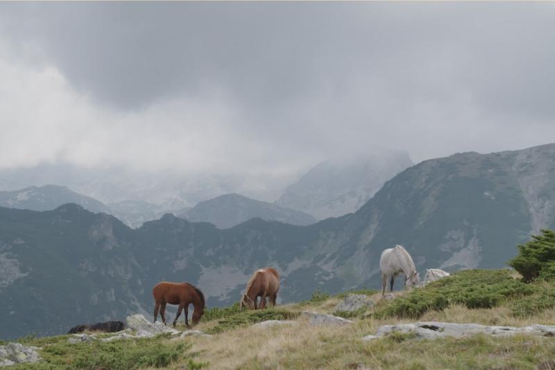 Bulgariens_Berge_Teil2_02